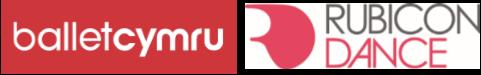 DUETS partner logos comp